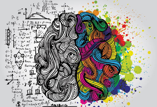 Learning from educational neuroscience | The Psychologist